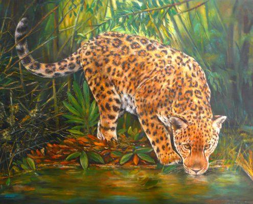 Leopard an der Tränke