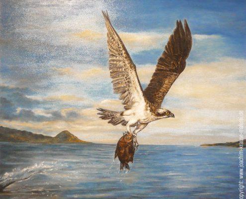 In den Fängen des Adlers