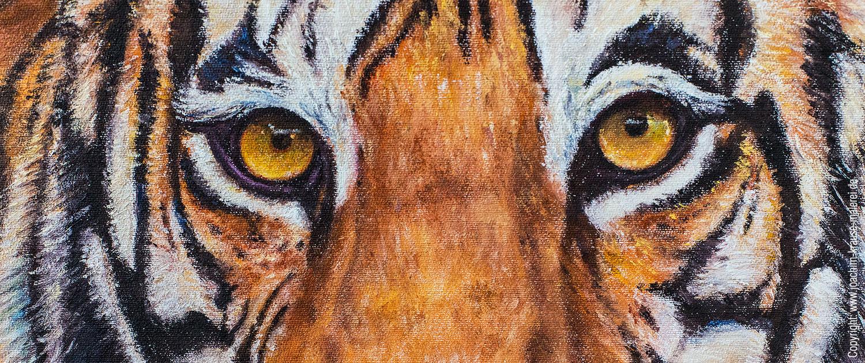 Tiger - Ausschnitt