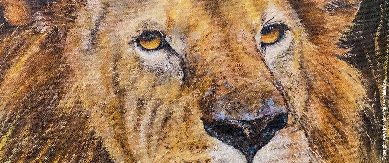 Löwe im Gras - Ausschnitt